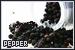 Pepper: